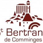 logo st-bert